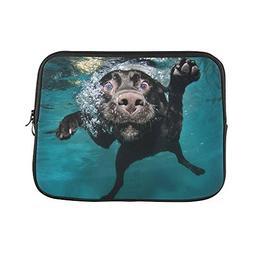 funny black dog puppy underwater